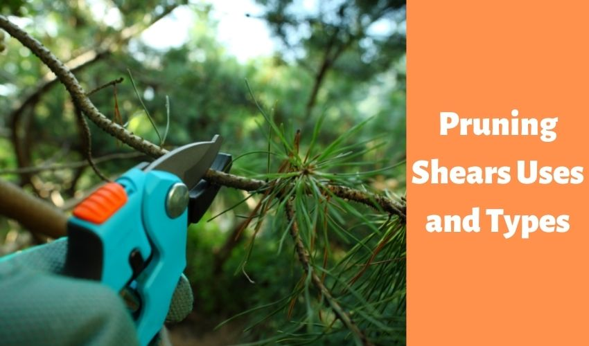 Pruning Shears Uses,types,electronic shears, punning shear brands